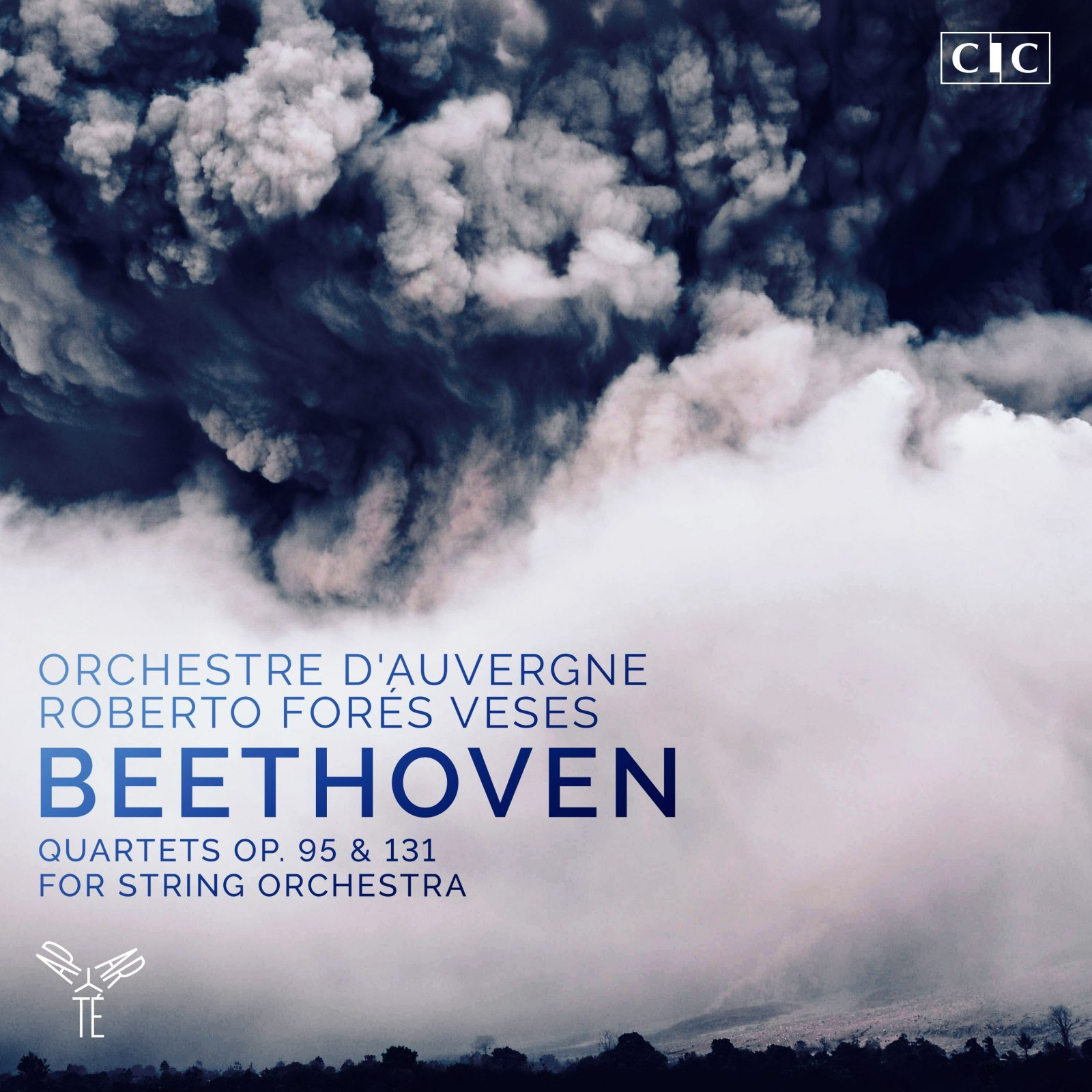 Beethoven: Quartets for string orchestra